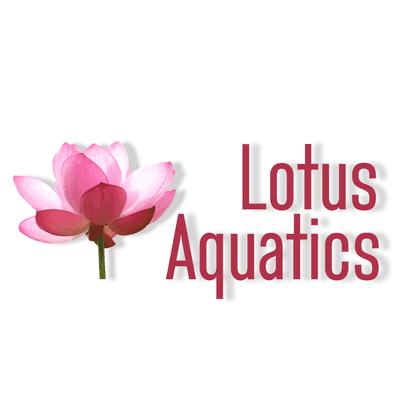 Avatar for Lotus Aquatics