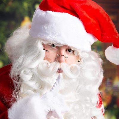 Avatar for The Eternal Santa