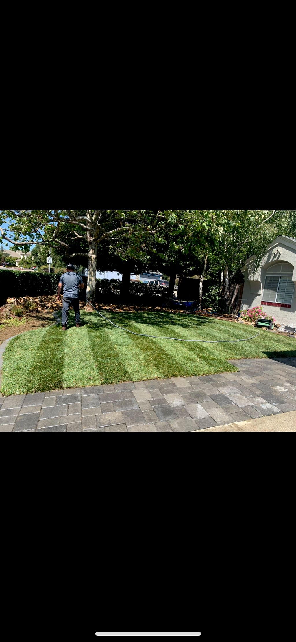 Grass and paver installation