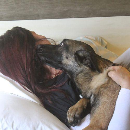 Client & her dog working focus