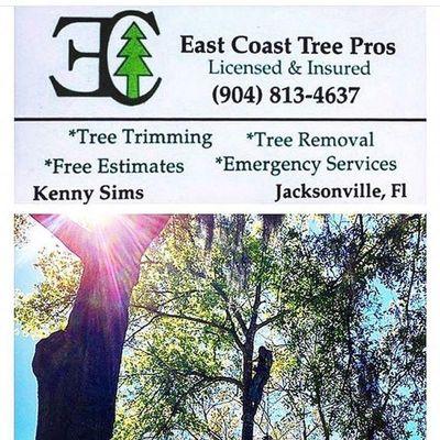 Avatar for East Coast Tree Pros