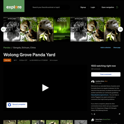 A view of Explore's conservation website, featuring live-feed streams.