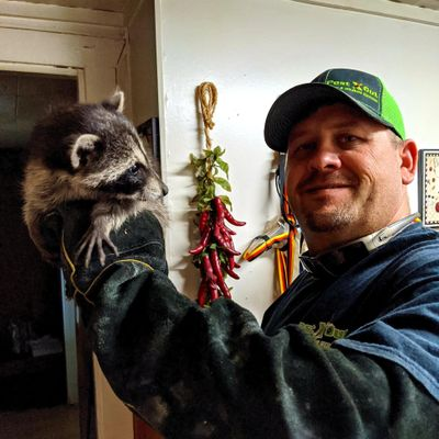Avatar for Pest X Out Pest & Wildlife Control LLC