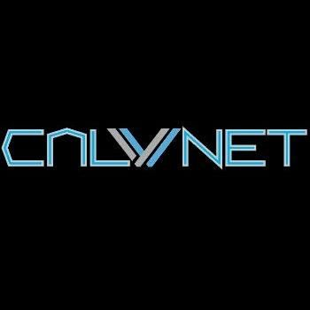 Avatar for CALVNET LLC