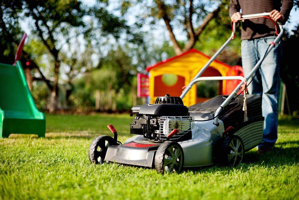 Pro Lawn Services