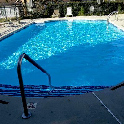 Avatar for Proclean Pool Service LLC.