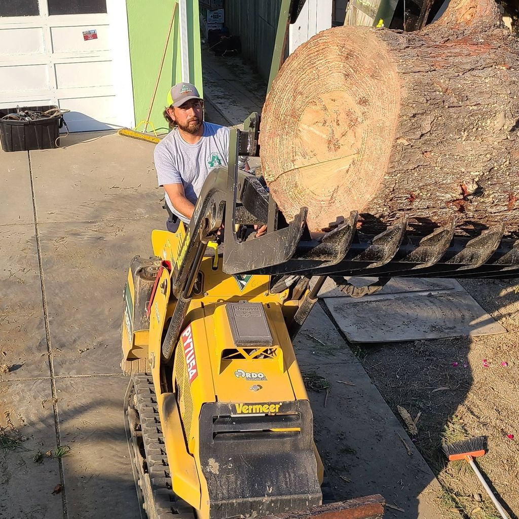 Acer Landscaping & Tree Care Inc.