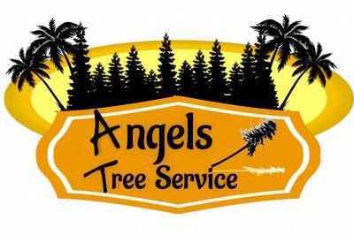 Avatar for Angels Tree Service