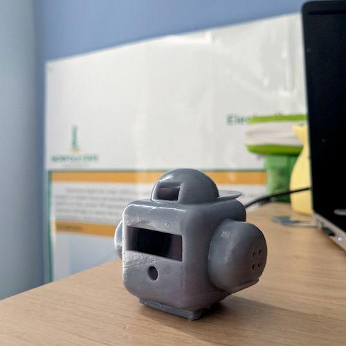Custom 3D printed Robotic head