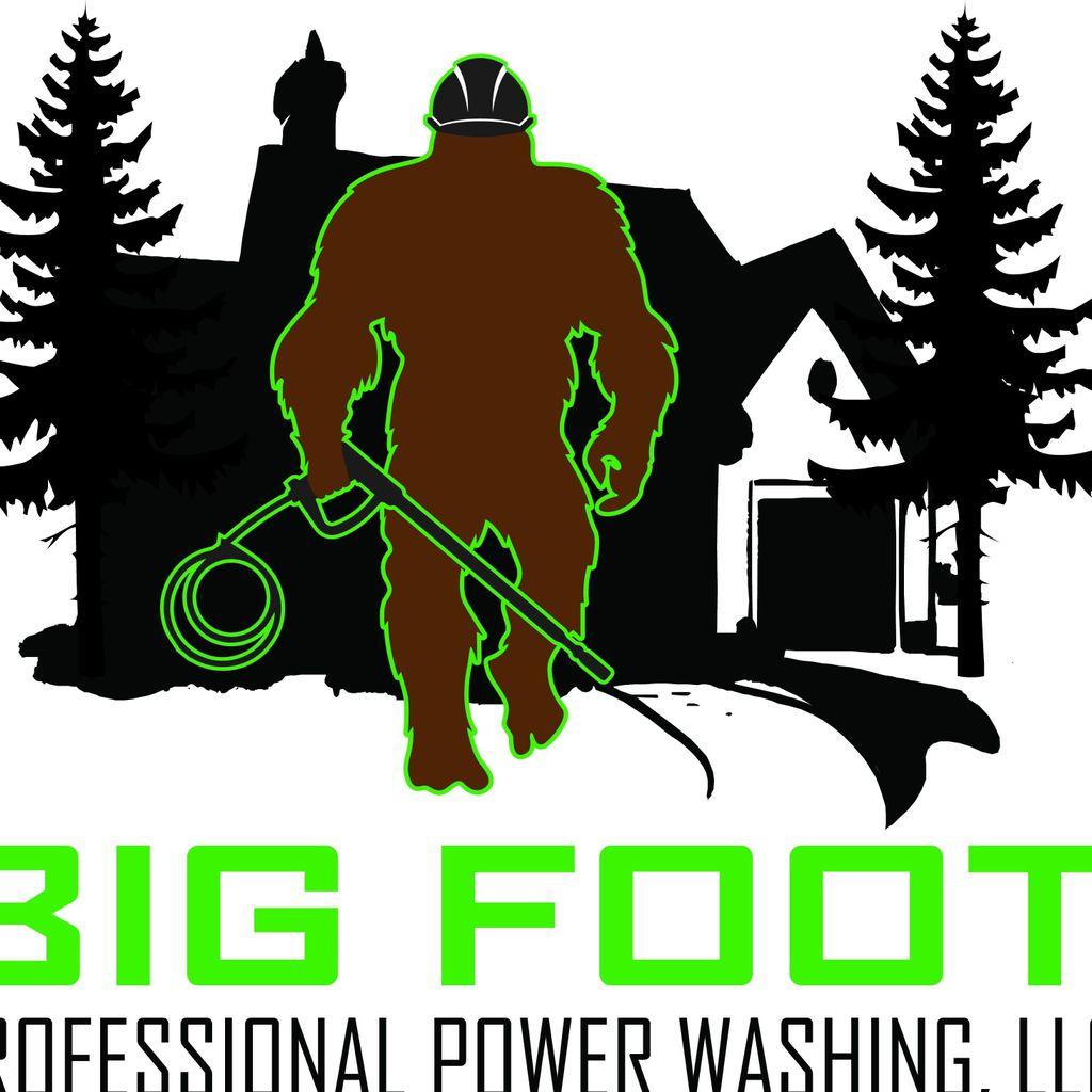 Big Foot professional power washing