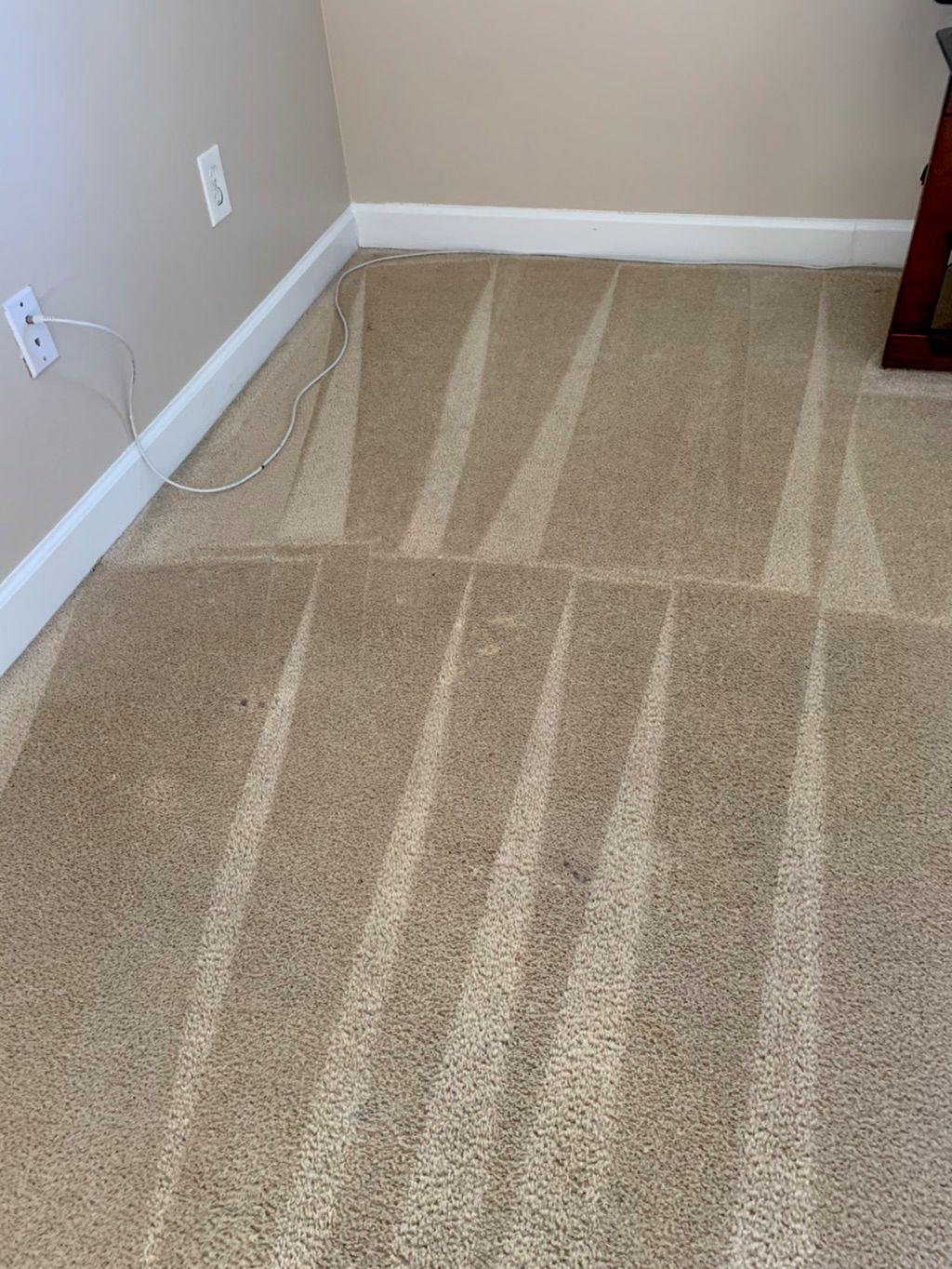 Chemfree Carpet care