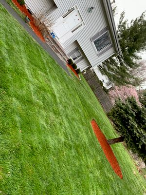 Avatar for New Beginnings Landscaping ,Trees & Snow Removal