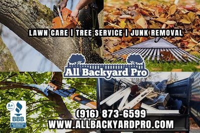 Avatar for All Backyard Pro
