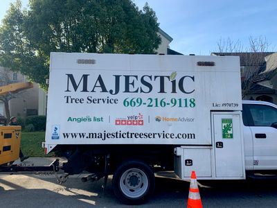 Avatar for Majestic Tree Service