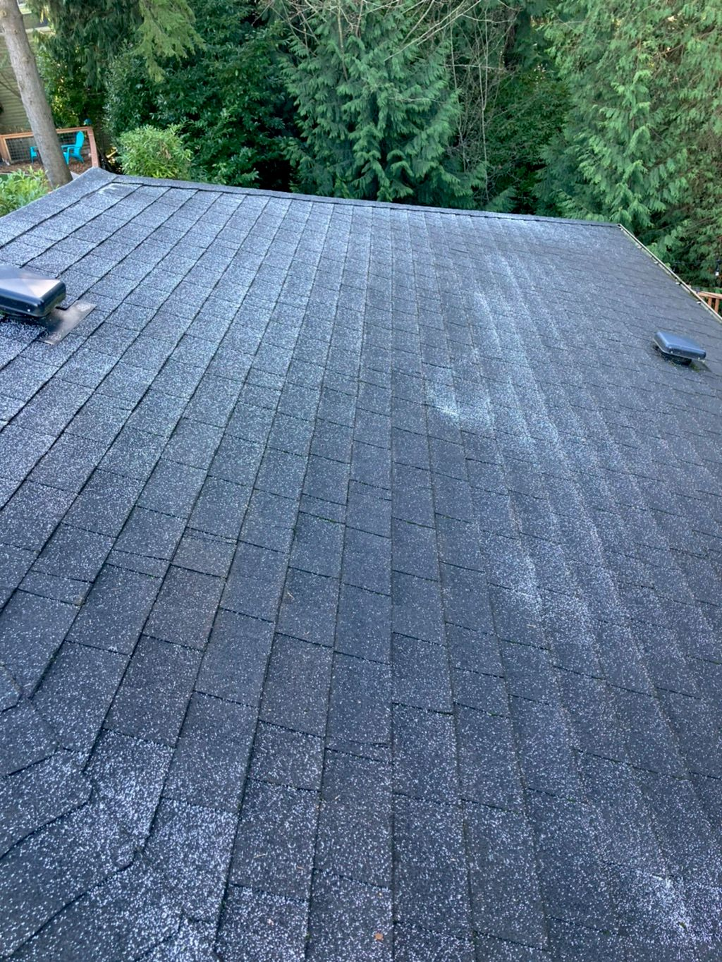 Roof Cleaning - Seattle 2021