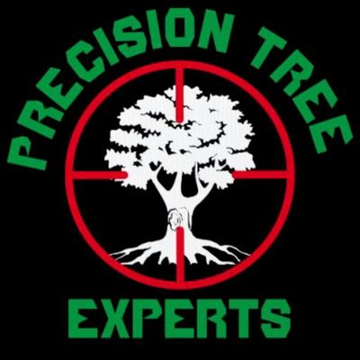 Avatar for Precision Tree Experts