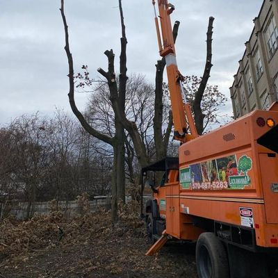 Avatar for Lackawanna tree service