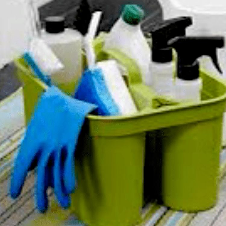 Sunshine Spotless Cleaning Services, LLC