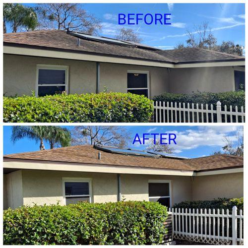 Roof Wash / House Wash