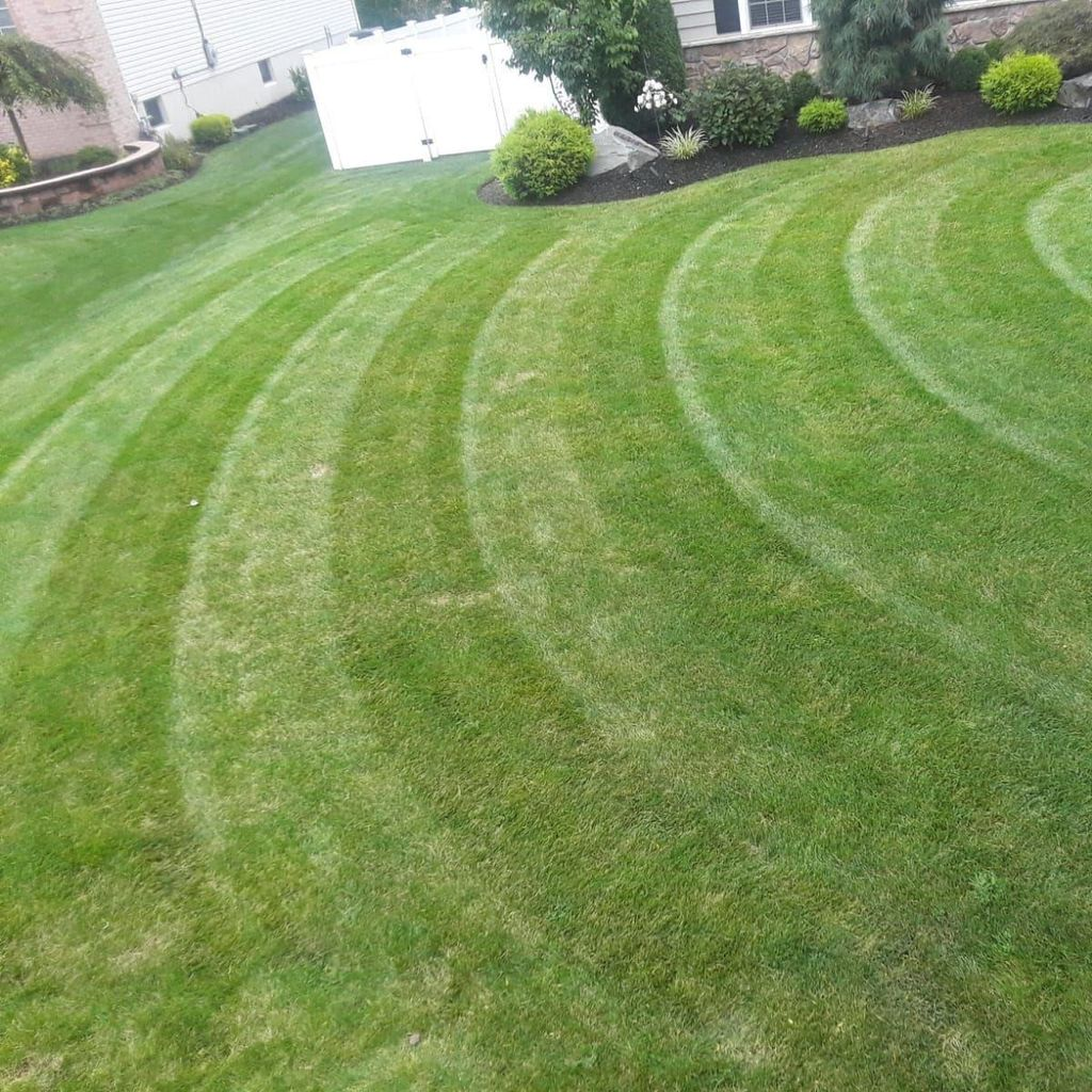 Deleon landscaping