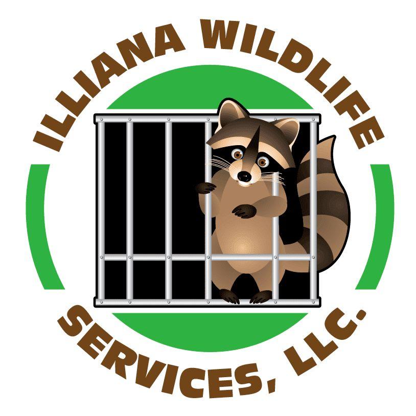 Illiana Wildlife and Pest Control