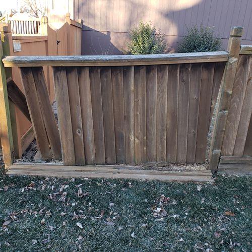 Broken Fence Before
