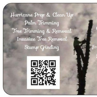 Tree Dimensional LLC