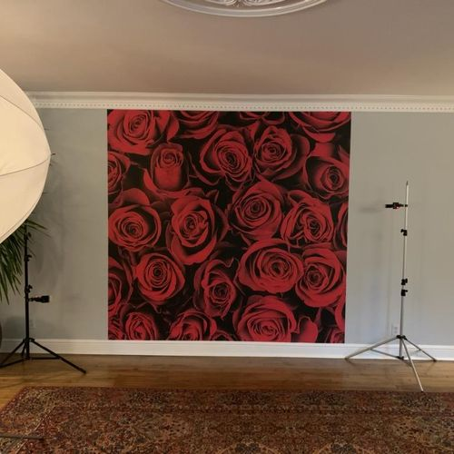 Valentine's Day Event Wall Mural