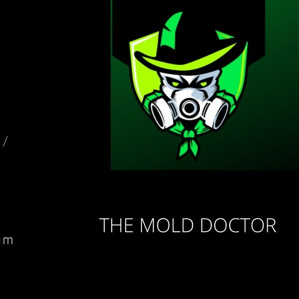 NEW IMAGE MOLD DOCTORS