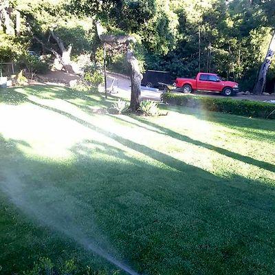 Avatar for reyes gardener