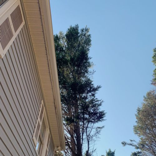 the end result of fixing the rotten fascia that was also tore down from a fallen tree. repairs fascia new gutter was added.