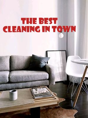Avatar for the best cleaning in town