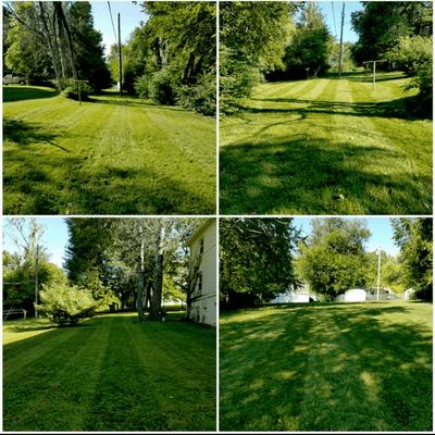 Avatar for Nebraska Great Lawn