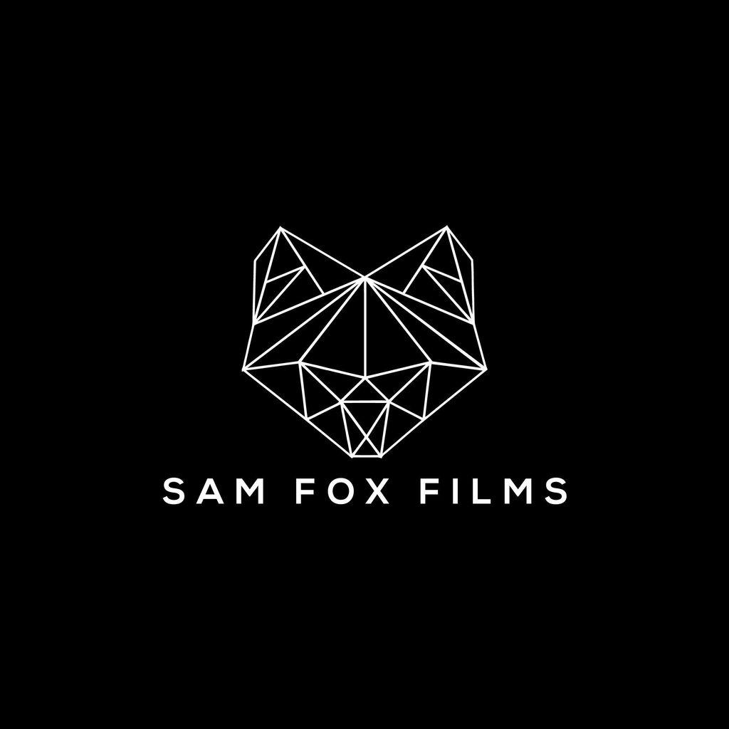 Sam Fox Films