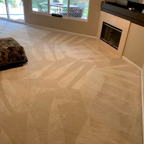 Basement Carpet Cleaning