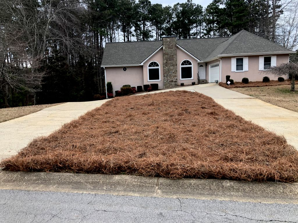 Shrub trimming and removal, place pinestraw