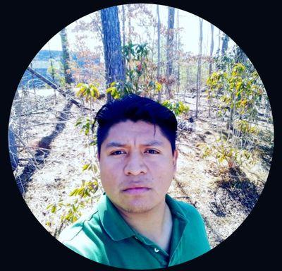 Avatar for Eagle lawncare & landscape inc.