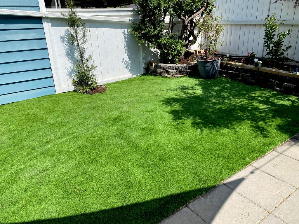 Espinona landscaping