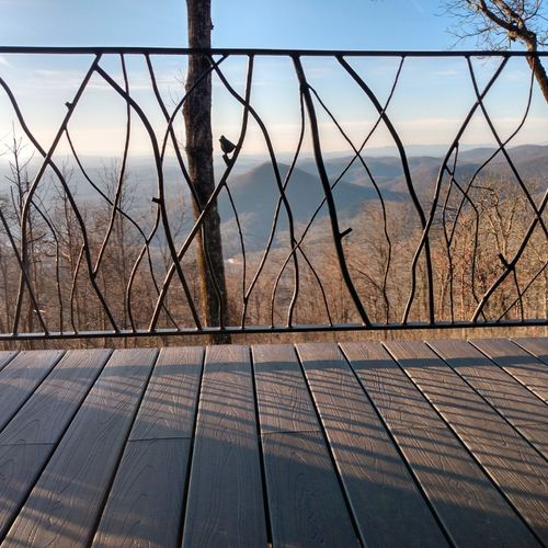 scattered branch railing w/hand forged cardinal