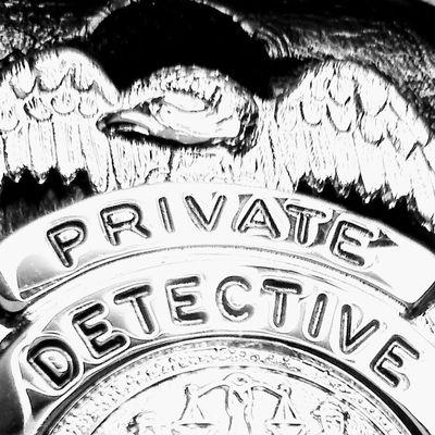 Avatar for True North Investigative Services