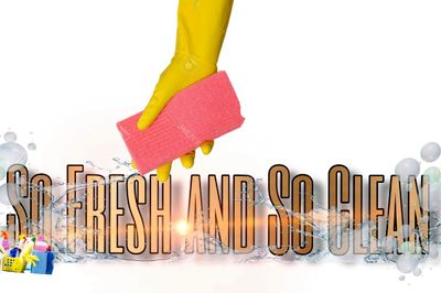 Avatar for SoFresh and SoClean Cleaning Services
