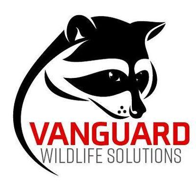 Avatar for Vanguard Wildlife Solutions