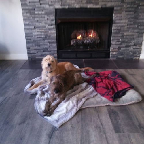 Otto and Finn always enjoy relaxing by the fireplace after a busy day in the backyard!