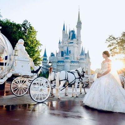 Avatar for Cinderella Weddings