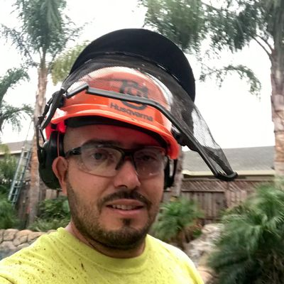 Avatar for California Greens Landscaping