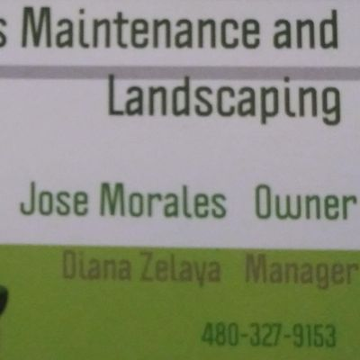 Avatar for Morales Maintenance and Landscaping