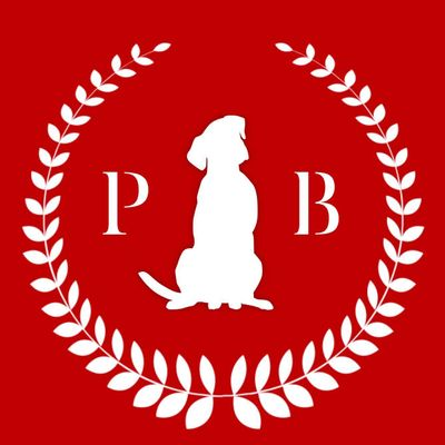Avatar for Plush Bark Dog Training & Pet Care