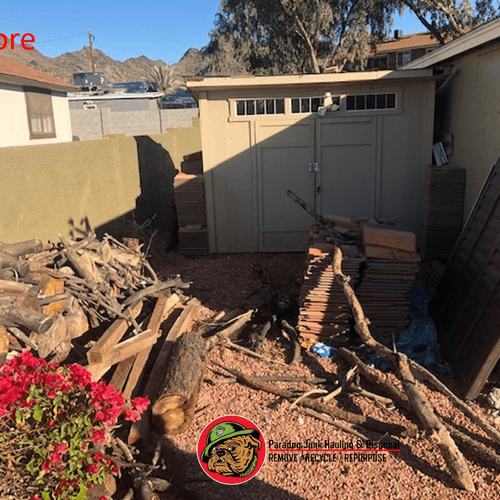 Shed and yard debris removal: Before