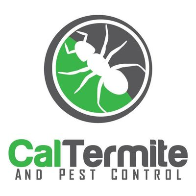 Avatar for Cal Termite