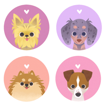 Avatar for HAPPY PETS